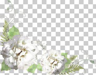 Floral Design Cut Flowers Flower Bouquet Desktop PNG