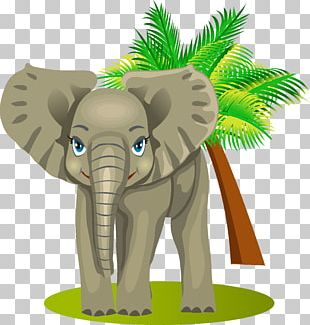Funny Cars Game For Kids Animals: Learning Spanish Drawing Software PNG