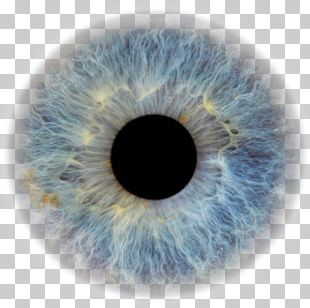 Transparent Eyeball Pupil Eye Color Human Eye PNG