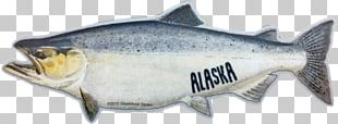 Coho Salmon Norway Oily Fish PNG