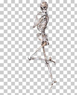 Skeleton On One Leg PNG
