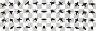 Bird Animation Computer Icons PNG