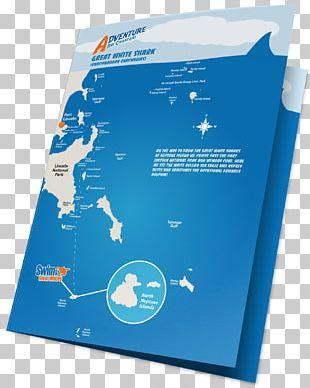 Great White Shark Fact Sheet Shark Cage Diving Mennie Brand PNG