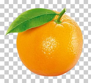 Tangerine Clementine Orange Fruit PNG