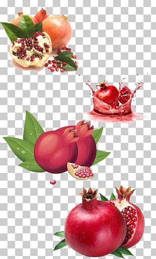 Pomegranate Fruit Food PNG