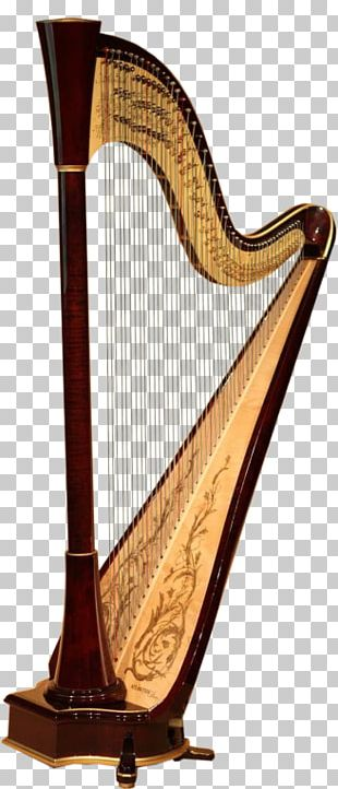 Camac Harps Musical Instrument Orchestra PNG