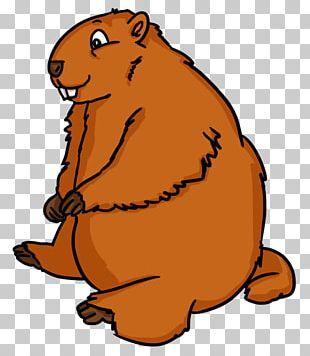 Groundhog Day The Groundhog PNG