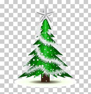 Christmas Tree Christmas Ornament Drawing PNG