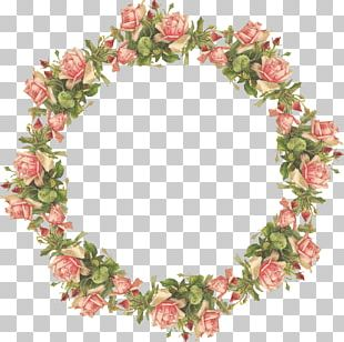 Flower Frame Display Resolution PNG
