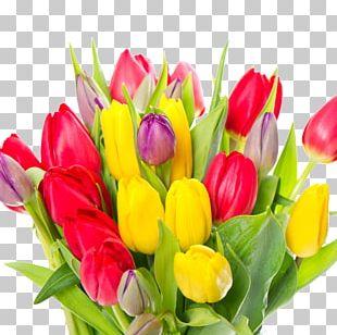Tulip Flower Bouquet Garden Roses White PNG