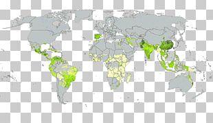 World Map World Map Religion Glavne Svetovne Religije PNG