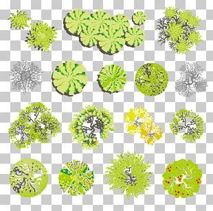 Tree Landscape Euclidean Illustration PNG