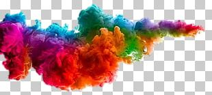 Festival Of Colours Tour Holi Color PNG