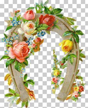 Flower Rose Box PNG