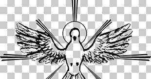 Holy Spirit Spiritual Gift Saint Catechism Of The Catholic Church PNG