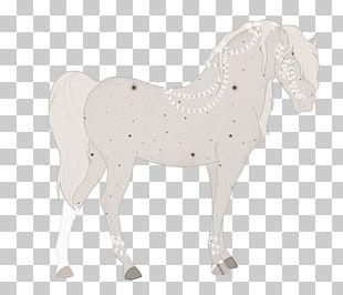 Stallion Mustang Halter Mare Rein PNG