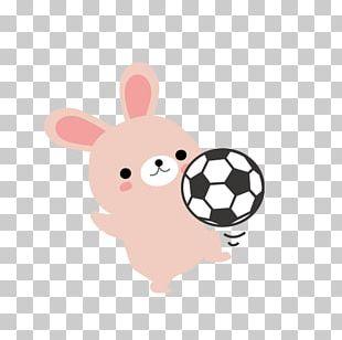 Rabbit Cartoon Raster Graphics PNG