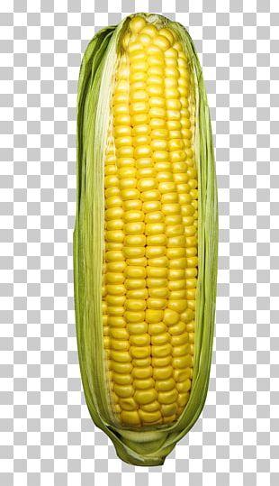 Corn On The Cob Corn Kernel Sweet Corn Commodity Fruit PNG