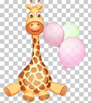 Giraffe Infant PNG