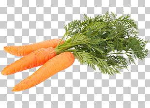 Carrot Vegetable Food Stock Photography Shutterstock PNG