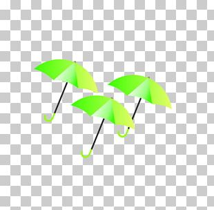 Green Umbrella Google S PNG