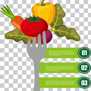 Infographic Vegetable Illustration PNG