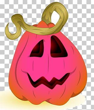 Jack-o-lantern Pumpkin Halloween Illustration PNG