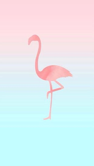 IPhone 6 IPhone 7 Flamingos Desktop PNG