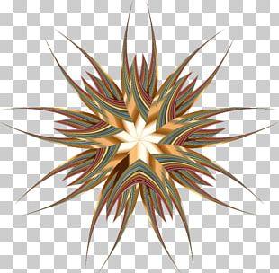 Portable Network Graphics Decorative Arts PNG