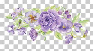 Floral Design Illustration Portable Network Graphics PNG