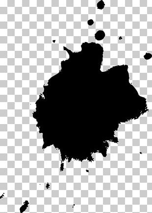 Black And White Monochrome Photography Paint PNG