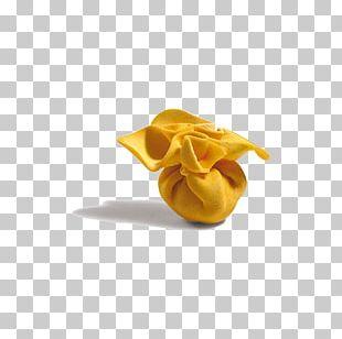Pasta Italian Cuisine Lasagne Stuffing Cheese PNG