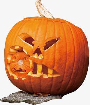 Pumpkin Pumpkin PNG