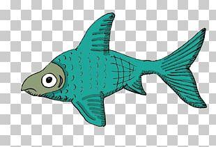 Marine Biology Cartilaginous Fishes Marine Mammal Fin Fauna PNG