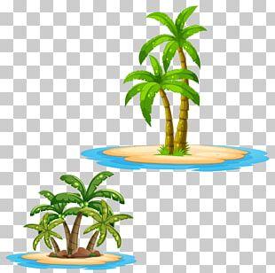 Arecaceae Tree Illustration PNG