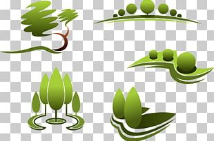 Landscape Design Landscape Architecture Landscaping PNG