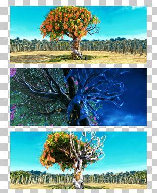 Digital Art Artist 14 October PNG