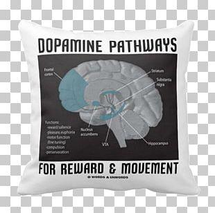 Human Brain Dopamine Neuroanatomy Limbic System PNG