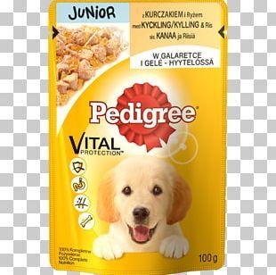 Dog Puppy Gelatin Dessert Chicken As Food PNG