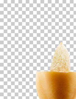 Flavor PNG