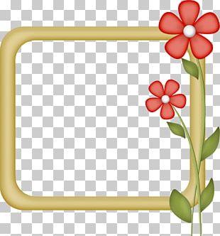 Floral Design Paper Borders And Frames Frames PNG