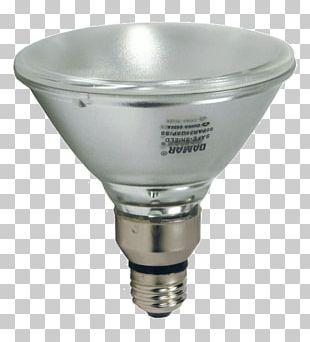 Lighting Incandescent Light Bulb Halogen Lamp Foco PNG