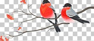 Bird Wedding Invitation Christmas Card Christmas Decoration PNG