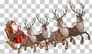 Santa Claus's Reindeer Santa Claus's Reindeer Rudolph PNG