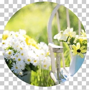 Garden Furniture Kays Florist Shed Gardening PNG