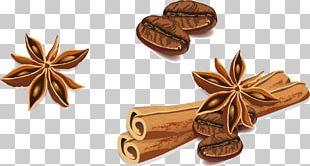 Star Anise Cinnamon PNG