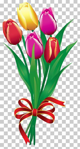 Flower Bouquet Tulip PNG