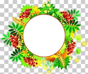 Flower Floral Design Leaf Food PNG