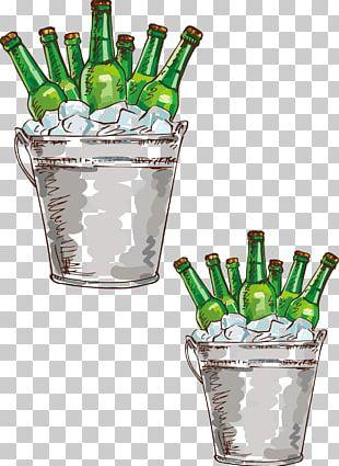 Beer Bottle Drawing Illustration PNG