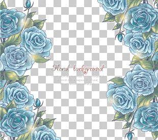 Flower Blue Rose Illustration PNG